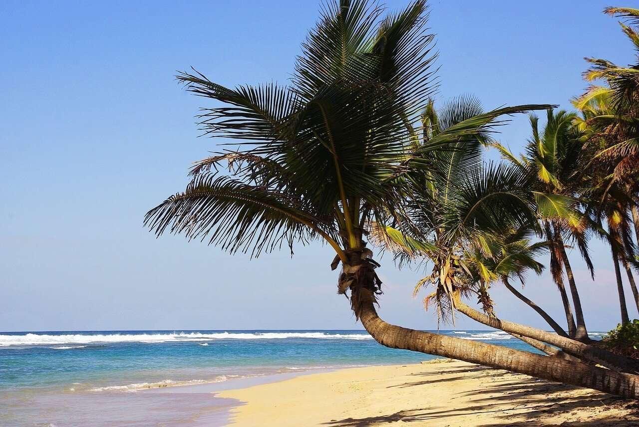 vacanze davvero low cost